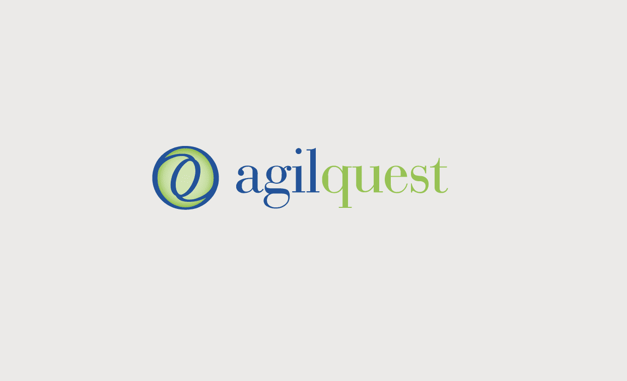 agilquest_case_04
